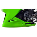 2013 Kawasaki Ninja 300 Hotbodies Color Form Lower Body Panel